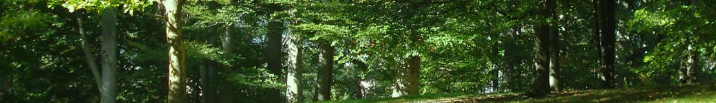 NDRGCC – Outdoor Range